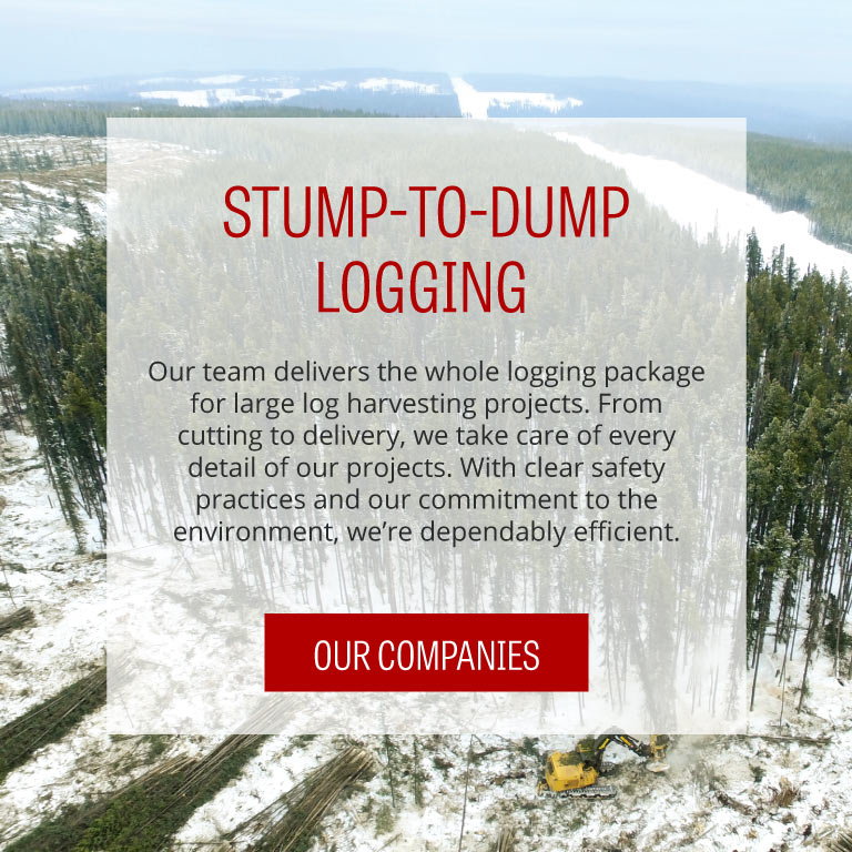 FTen La Crete, Alberta - Stump to Dump Logging
